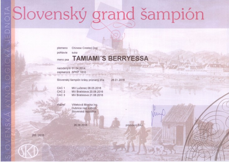 16_berryessa_sampionat_grand.jpg